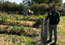 Silvio Melis ci mostra i bancali del laboratorio dell'agricoltura sinergica (foto Feder)