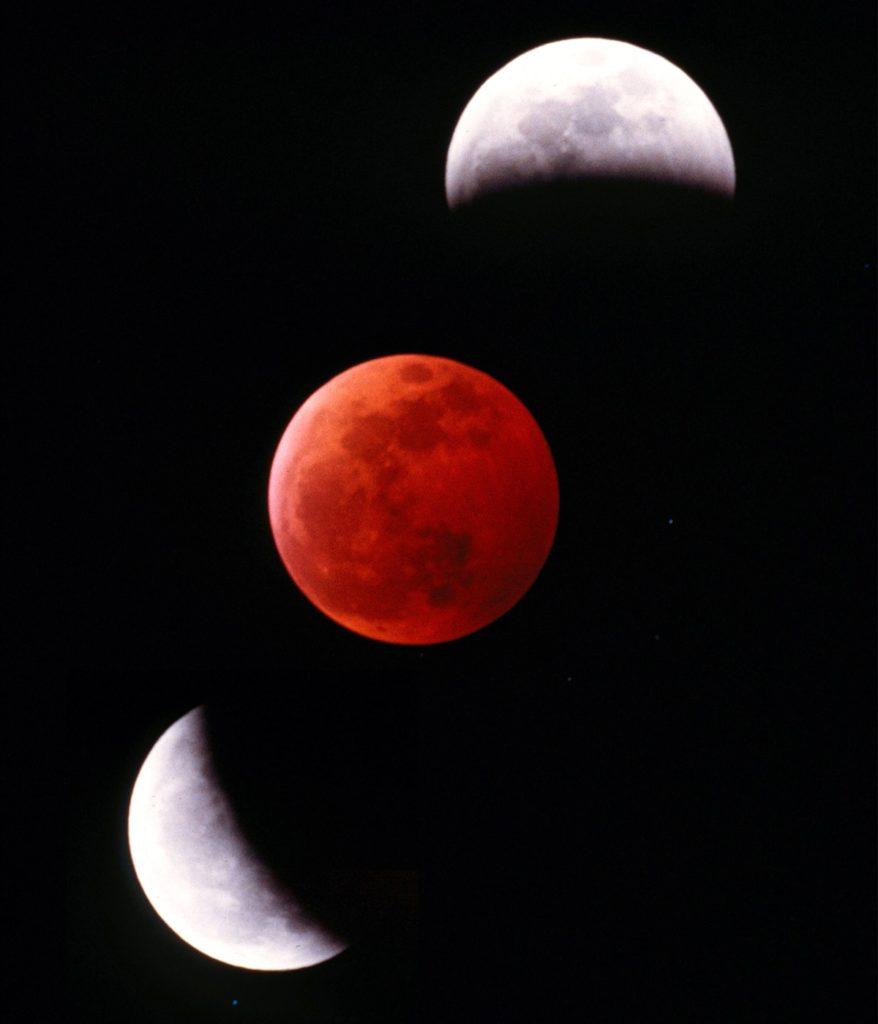 Immagine dell'eclissi totale di luna scattata col telescopio da Marco Massa