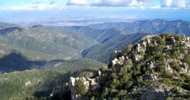 Panorama dal Monte Lattias (foresta di Gutturu Mannu / oasi WWF)