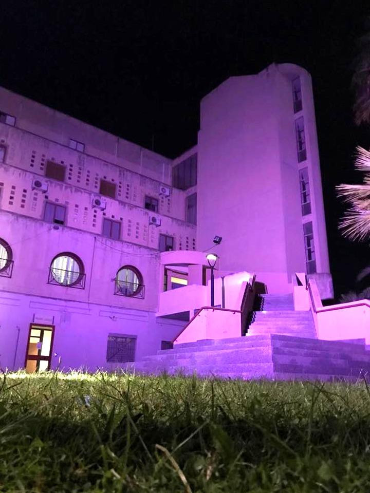 Il palazzo municipale illuminato di viola (foto M5S Assemini)