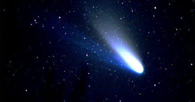 Halley e la sua cometa