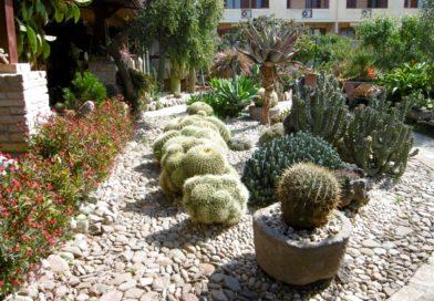 Decimomannu, il giardino incantato di Lucia e Battista
