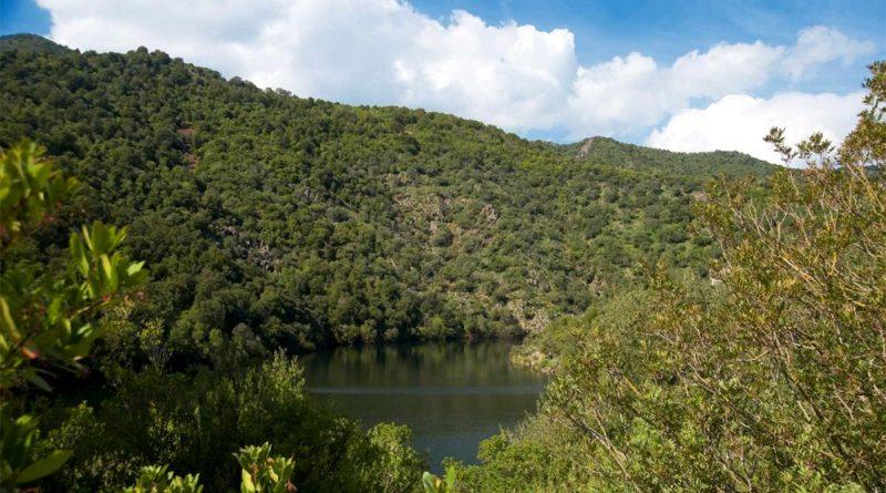 Parco regionale di Gutturu Mannu - foto Sardegna Turismo