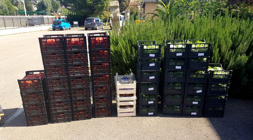 Consegna derrate alimentari Protezione Civile Assemini