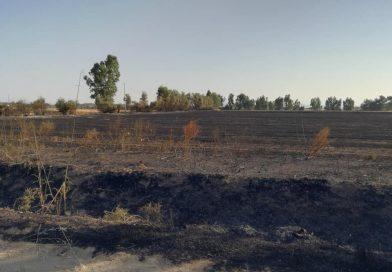 Incendio Decimoputzu, il commissario dichiara Stato di Calamità naturale